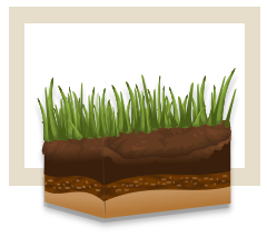 soil-aeration